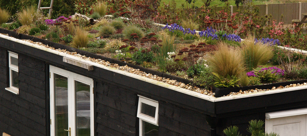 The Green Roof Garden ...