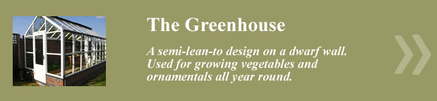 The_Greenhouse_New_Link