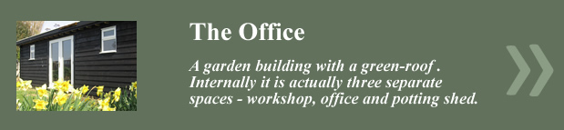 The_Office_New_Link