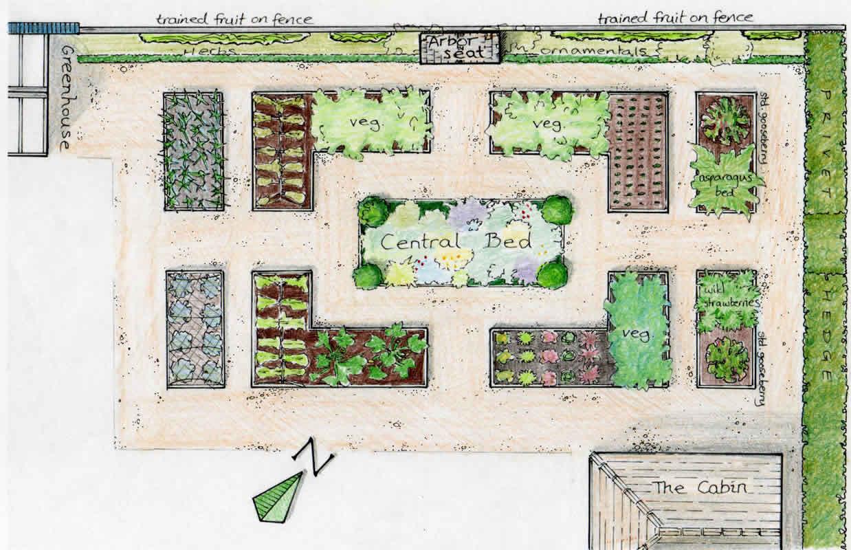 Raised Vegetable Garden Layout Design 1238 x 800