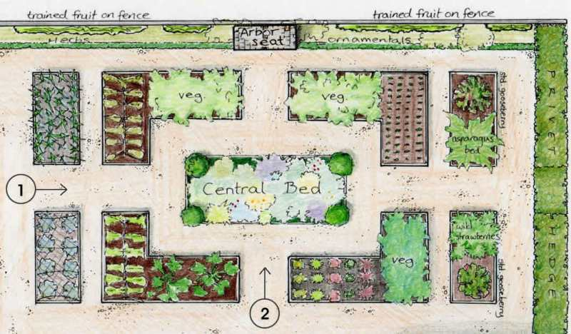 The vegetable garden an englishman 39 s garden adventures for Fruit and vegetable garden design