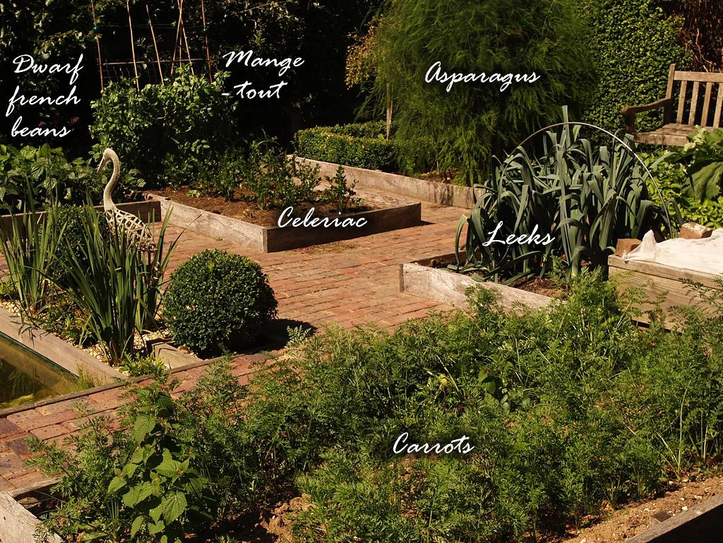 An englishman 39 s garden adventures a photojournal of the for Pretty vegetable garden designs
