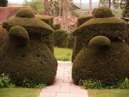 Teapot topiary flanking the path