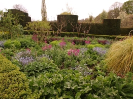 The Orchard Garden - a huge area of plants, humans confined to narrow paths between box hedges!