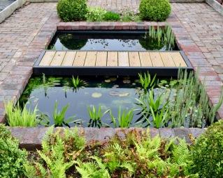 Pond-May-2017-6