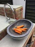 Washing home grown carrots