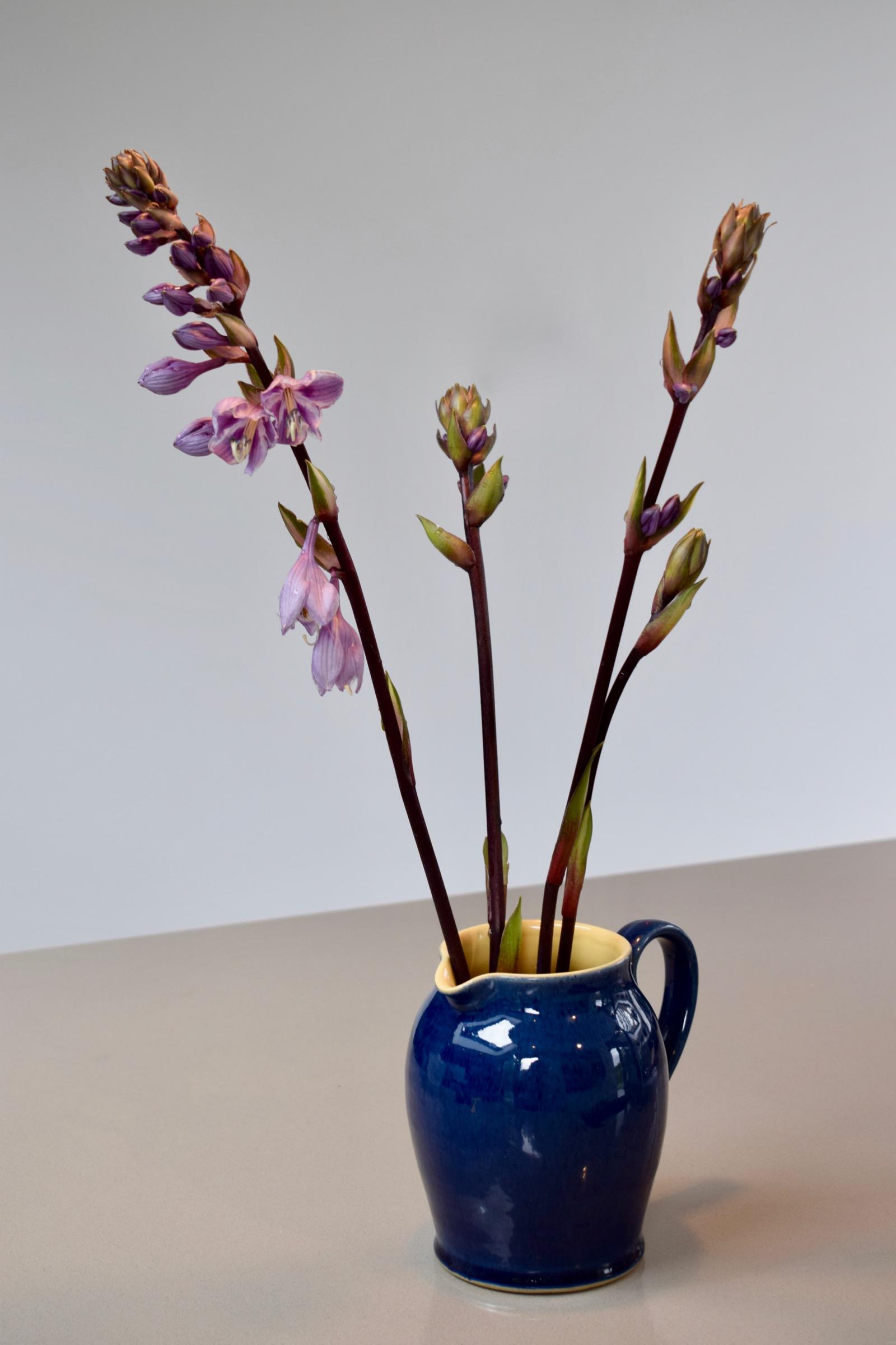 Hosta Flowers A Second Look An Englishmans Garden Adventures